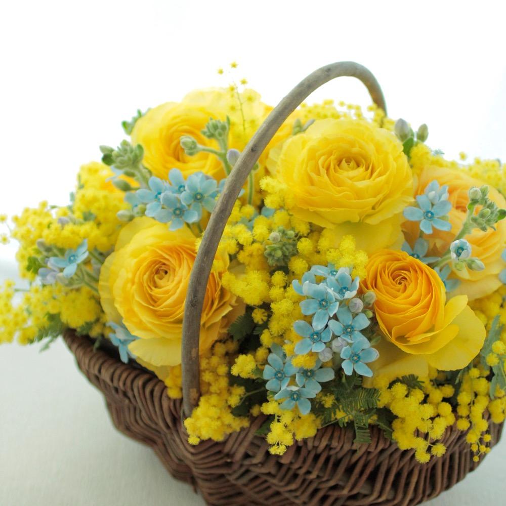 コーポレートカラーの黄色と青で作られたミモザの祝い花|