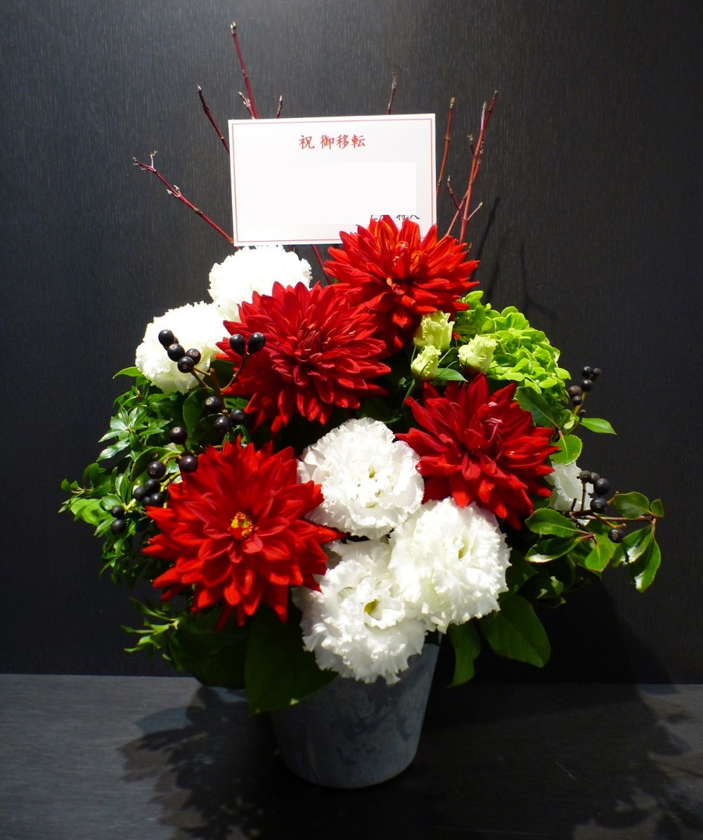活気あるおしゃれな会社さまに贈られたご移転祝い花|