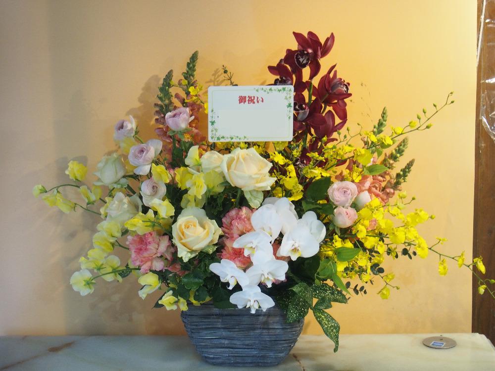 エステサロンリニューアルオープンへ さりげなく胡蝶蘭を用いた上品な祝い花|