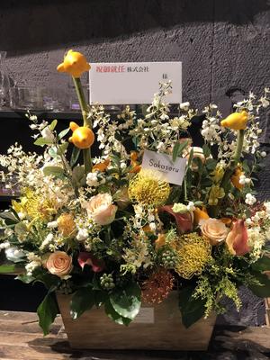 ご就任祝いに贈られた祝い花|