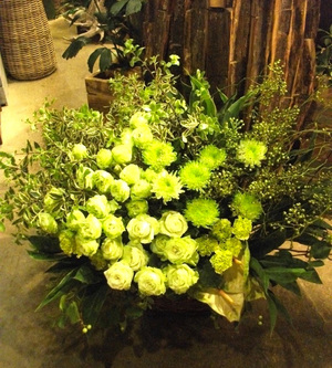 コーポレートカラーのグリーンを使った初夏の爽やかなご移転祝い花|