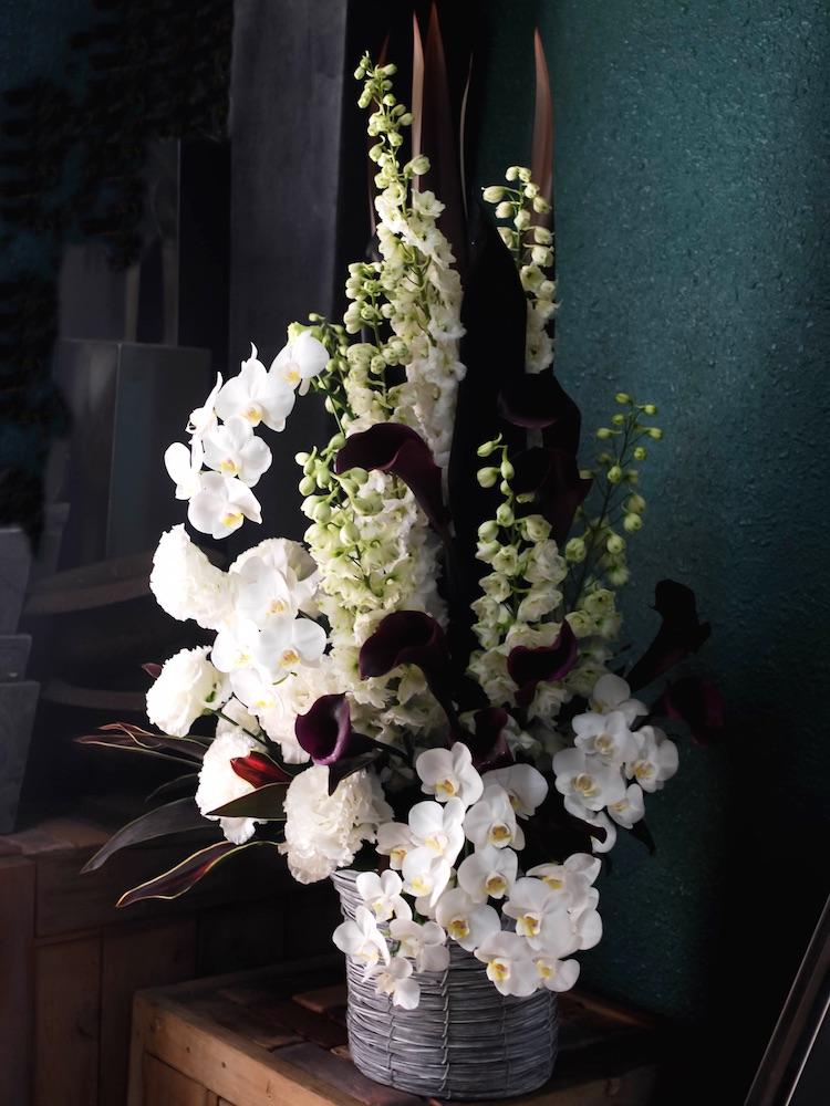 就任祝いに贈る背の高い胡蝶蘭のアレンジ